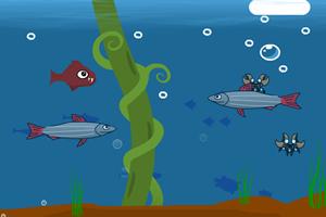 凶猛大鱼吃小鱼