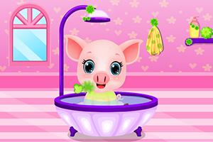 照顾可爱的小猪猪