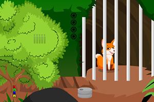 小狐狸救援