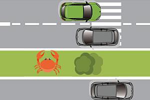 螃蟹走马路