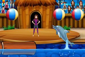 我的海豚环球表演