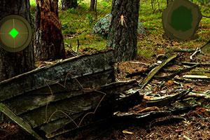 逃离庇护森林