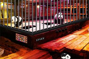 感恩节拯救熊猫