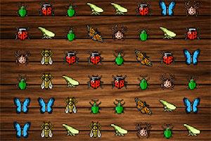 各类昆虫对对碰