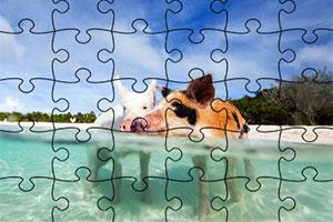 巴哈马群岛拼图