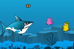 鲨鱼深海觅食