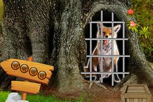 救援小狐狸