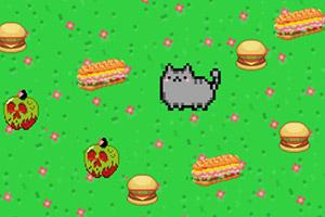 猫先生觅食