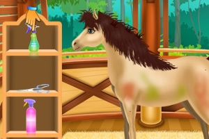 马水疗护理