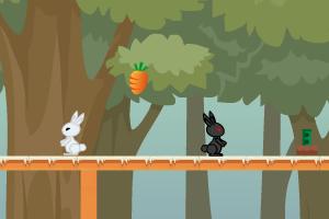 小白兔回家