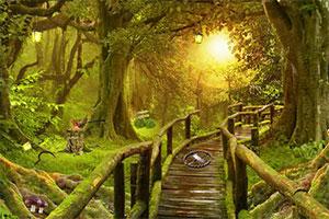 逃离热带丛林