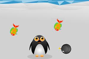 爱吃鱼的企鹅