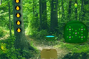 茂盛绿林逃脱