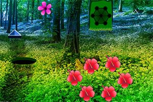 逃离热带花丛林