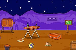 寻找沙漠珍宝
