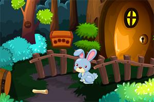 寻找兔子的萝卜