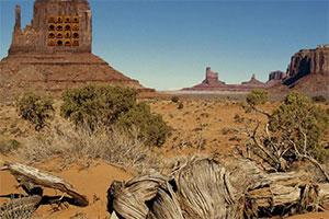 沙漠中迷失