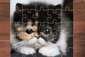 小萌猫拼图
