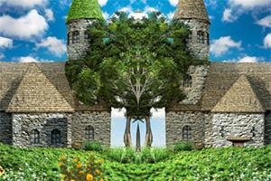 树之村找不同