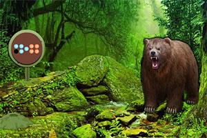 灰熊森林逃生