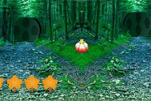 困在森林的女孩