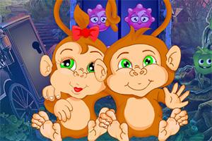 救援小猴�p胞胎