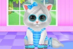 可爱小猫呵护记