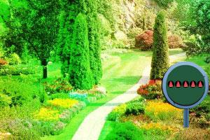 逃出花卉之园